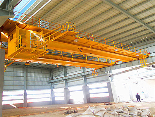 EOT double girder crane from Weihua