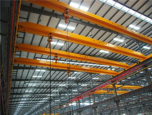 Professional 1 ton crane